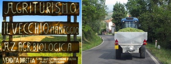 Agriturismo signage and grape truck