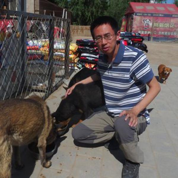 Zhang Xiaoqiu and his rescued dogs