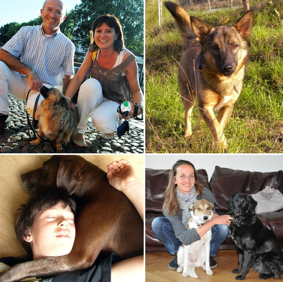 More dogs & their families