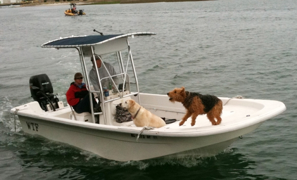 Boat with barking dog