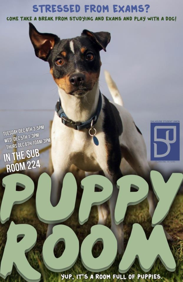 Visit the Puppy Room poster