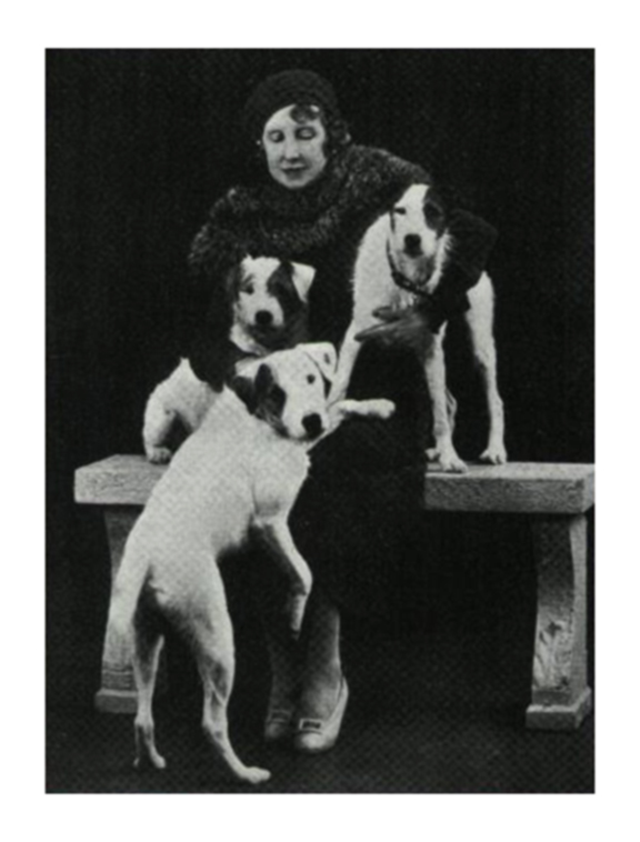 Elizabeth von Arnim and her dogs