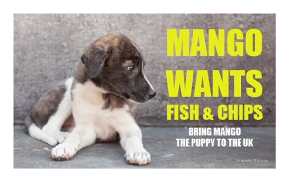 Mango Wants Fish and Chips by Martin Usborne