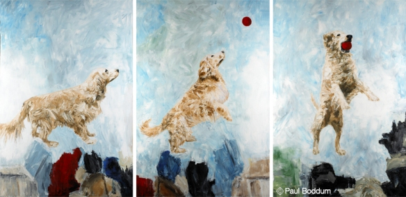 Three Studies of Brody by artist Paul Boddum