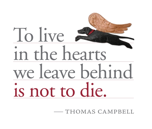 Quote by Thomas Campbell