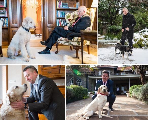 Monocle Magazine's Dog Ambassadors Article