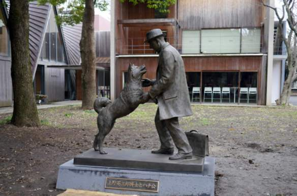 Hachiko and Professor Ueno statue in Japan